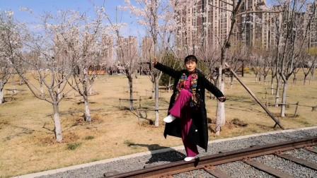 樱花园中游