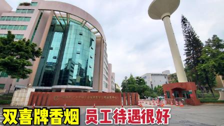 实拍双喜牌香烟生产地:广东中烟卷烟厂,员工年薪几十万