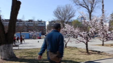 芳菲四月天 走进辽沈战役纪念馆园区感受凝重气氛赏满园春色