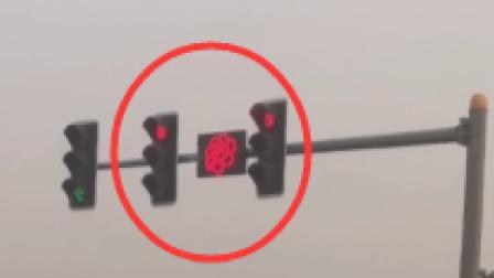 洛阳上线牡丹形状红绿灯 网友:能让等红绿灯不急躁