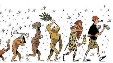 人类进化后全身毛发褪去,为啥独留头发和腋毛