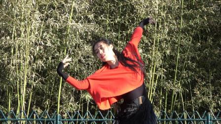 睿睿老师独自表演广场舞《那拉提的养蜂女》歌好听,舞步优美大气