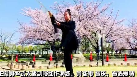 养生健身42式太极剑慢动作演练 优美好看