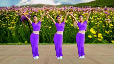 DJ健身操《油菜花开》3组动感节奏摆胯瘦腰,超强甩脂