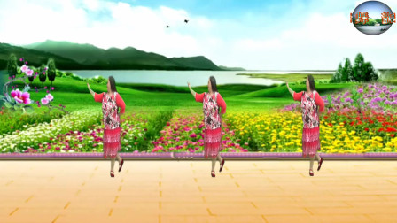 广场舞《酒醒的蝴蝶》歌声悠扬醉人 舞步简单易学