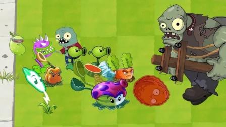 植物大战僵尸动画片 植物:我们的花园我们一定会守护好的!
