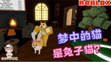 Roblox噩梦模拟器:梦中的猫咪竟然长出了兔耳朵!