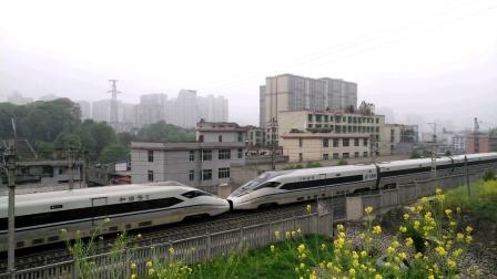 【2021.04.10】G1321次(上海虹桥―六盘水)CRH380D-1515&1542