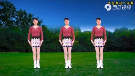 我的视频,电子琴广场舞。