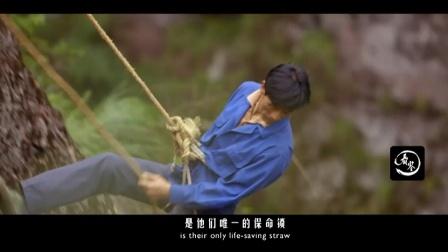 """采药人徒手攀登几千米悬崖,他们口中的""""植物黄金""""究竟是什么?"""
