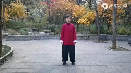 杨氏传统太极拳85式