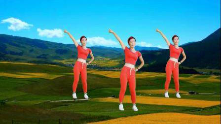 DJ广场舞《一物降一物》人间情为何物?经典情歌创新32步