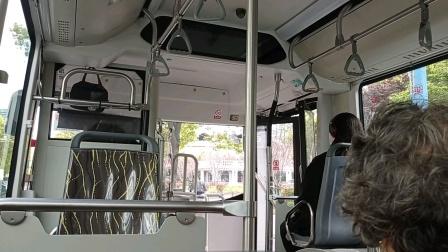上海公交车741路长临路长江西路-长临路共康八村
