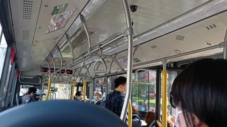 上海公交车812路营口路安波路-营口路国顺东路