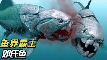 5种最危险的海洋生物,鱼界霸主邓氏鱼,大白鲨也害怕?