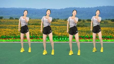火爆广场舞《邂逅》时尚简单健身,大家一起跳起来!