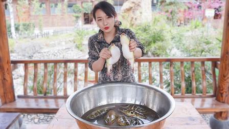 表嫂买9条河豚冒死试吃,用贵州茅台煮一锅,先把密码留给表哥