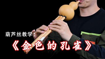 葫芦丝教学《金色的孔雀》,入门到精通教程第183课时,马永亮