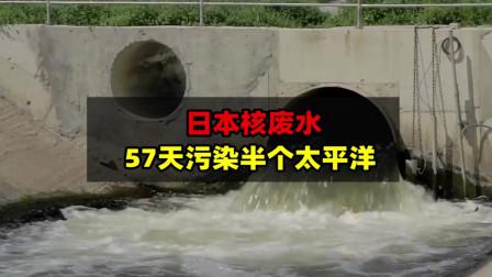 假如日本把核污水排放入海?57天真能蔓延半个太平洋吗?