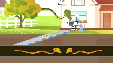 毒蛇为何会出现在厕所里?动物科普英语学习