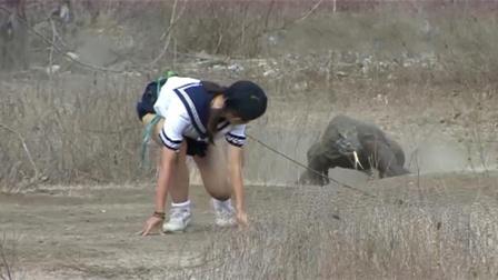 日本作死女子绑上一块肉,勾引科莫多巨蜥追自己,这是嫌命太长?