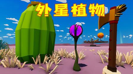 沙漠求生第42天!我在新的一片沙漠找到了外星植物,必须用金斧头才能收割它