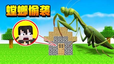 巨型蟑螂怪偷袭小七的家,小七灵机一动成功逃脱!我的世界