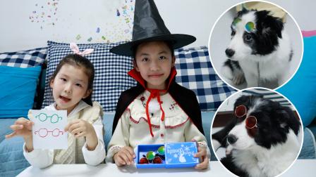 狗狗故事:小四和小五想要眼镜,艾米儿把苏菲娅的画变成了眼镜