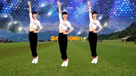大众健身广场舞《爱情花蝴蝶》DJ版弹跳步子舞