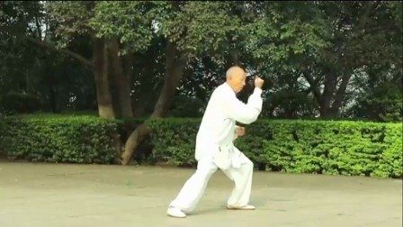 白发大爷健身 练一套陈式56式太极拳 了不得美极了