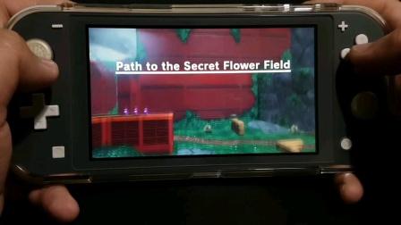 超级马里奥奥德赛:秘密花园