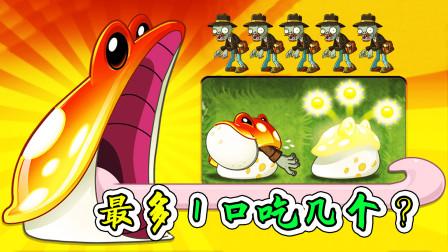 植物大战僵尸2:金蟾茹一口最多吃几个敌人,你猜?宝妈趣玩