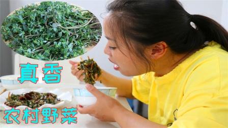 农村这种野菜全身都是宝,堪称健康长寿菜,这样做不仅营养还好吃
