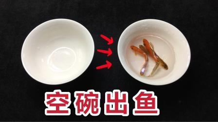 空碗出鱼,餐桌上就能表演!学会骗朋友玩