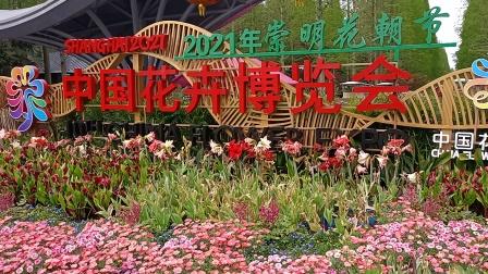 崇明花博会