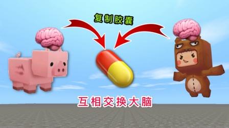 迷你世界:小表弟为了变聪明,复制了猪的能力,结果却倒了大霉