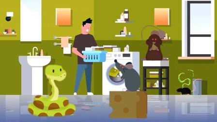 除了毒蛇,老鼠也会从厕所里跑出来?