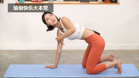 猫式翻转拉伸,瑜伽女神的经典动作