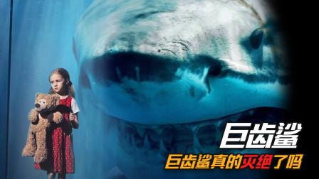 巨齿鲨真的灭绝了吗?1916年巨型鲨鱼袭击事件,能否证明它还存在