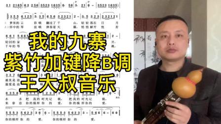 《我的九寨》紫竹加键葫芦丝降B调演奏,不改变原指能吹高音