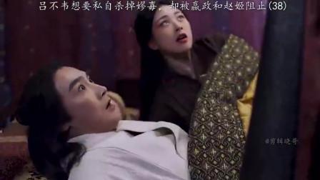 大秦赋:吕不韦被嬴政和赵姬阻止