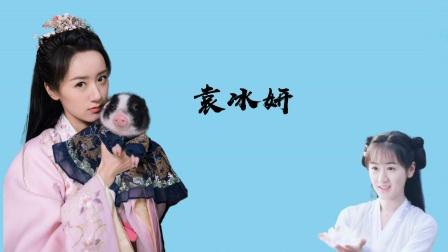 袁冰妍最新社交动态,与荷兰猪有爱互动,网友喊话剧组换个造型