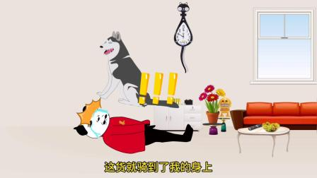 沙雕动画:狗和狗之间的差距怎么这么大