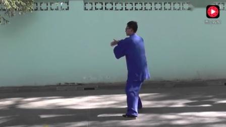 杨大卫传统杨式太极拳八十五式背面演练