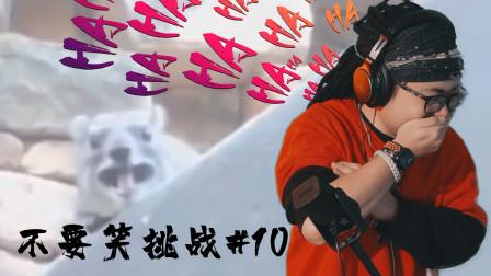 【水蛭】最轻松的不要笑挑战(不要笑挑战#10)