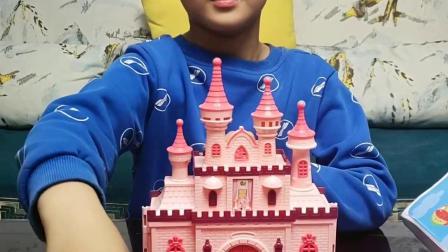 我的童年:看看我的小猪家族城堡