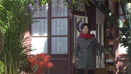 千金保姆:富家女失忆做保姆,主人家院子被她装扮得比公园还漂亮