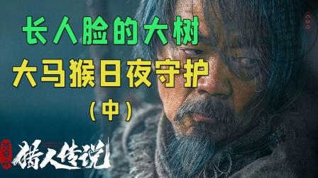长着人脸的大树,大马猴日夜守护(中)