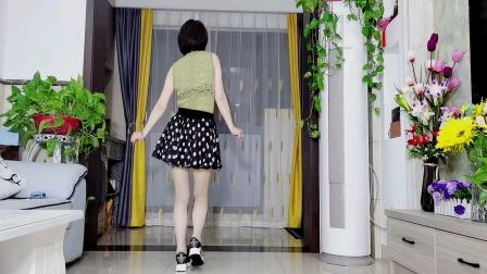 背面广场舞DJ《迷人的诱惑》简单好跳