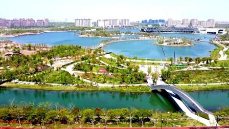 《上海之鱼》《年丰公园》